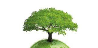 Asense, magasin de ressources énergétiques renouvelables