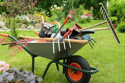 Mr Bricolage, jardinage