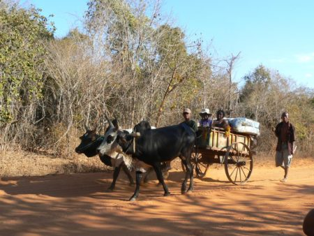 Aventour Madagascar, Ifaty