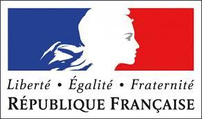 """Résultat de recherche d'images pour """"logo ambassade france"""""""