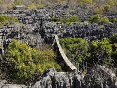 Madagascar National Parks, Ankarana