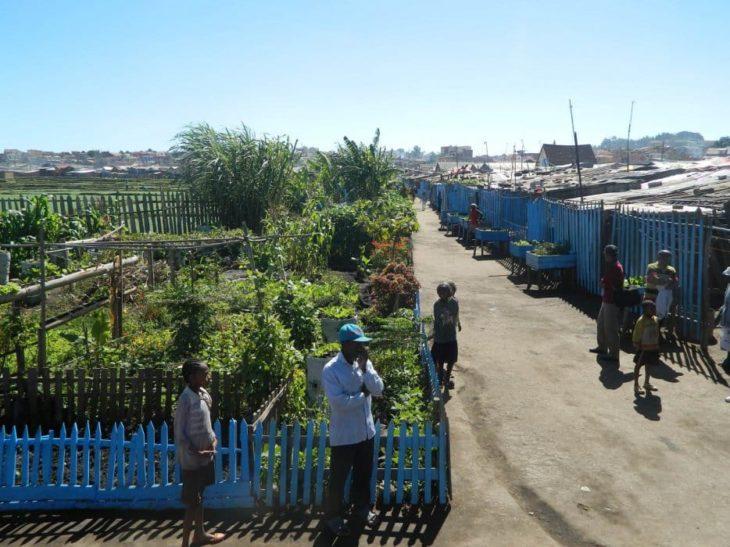 IMV environnement Tana