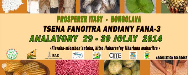 Foires Madagascar Fanoitra