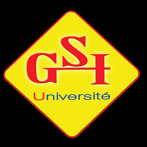 """""""Se former pour aller plus haut"""" (slogan de GSI)"""