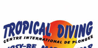 Logo Tropical Diving