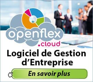 Logiciel de Gestion dans le Cloud